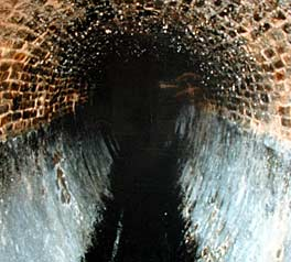 Brussels Sewer (le egout)